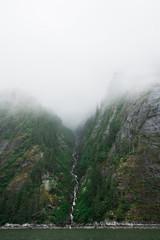 Foggy Ravine