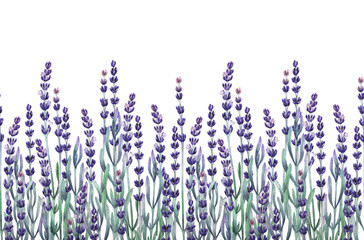 Watercolor lavender design