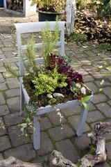 Alter bepflanzter Stuhl