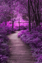 Keuken foto achterwand Snoeien Beautiful surreal purple landscape image of wooden boardwalk throughforest in Spring