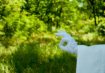 The waiter's hand in a white glove and with a white napkin shows with a finger ok on the left on a green background of trees and bushes on a blurred background