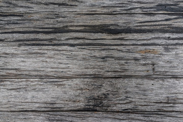 Old grunged natural dry wood texture wall texture as background