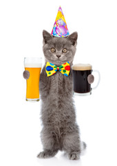 Funny cat in birthday hat holding dark and light beer. isolated on white background