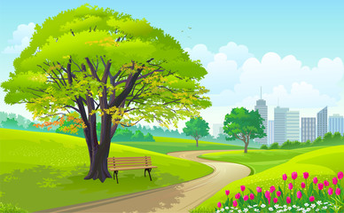 Wall Murals Lime green Beautiful park outside a busy city