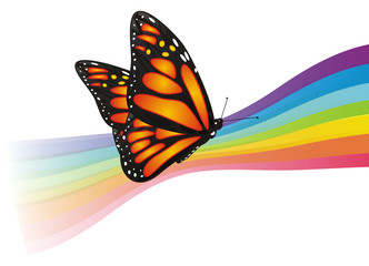 Butterfly, monarch, wings, flying, insect, nature, cartoon, black, orange, white, colored, lines, rainbow,