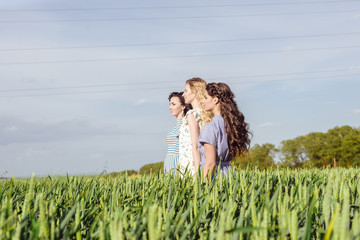 Three beautiful lady or women in wheat field