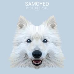 White Samoyed dog animal low poly design. Triangle vector illustration.