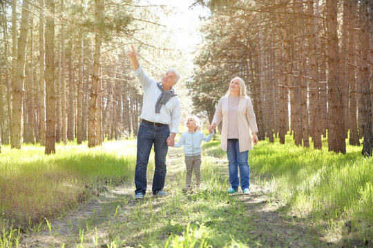 Happy grandparents with little girl in forest on sunny day