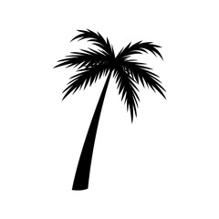 silhouette palm tree tropical natural vector illustration