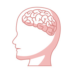 human head with brain part organ anatomy vector illustration