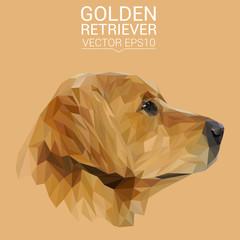 Golden Retriever Dog animal low poly design. Triangle vector illustration.