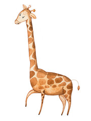 Watercolor illustration of funny cartoon giraffe drawn on paper