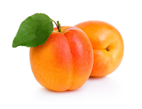 Ripe apricot fruits with green leaf isolated on white