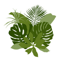 Green composition with plain tropical leaves