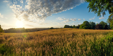 panorama view of summer countryside morning,Northern Ireland