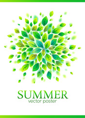 Green vector leaves splash vector summer poster template
