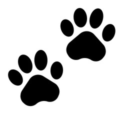 Animals footprints design. Vecto illustration. Flat design.