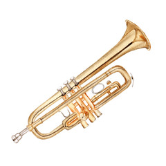 Musical instruments. Trumpet. Isolated on white background.