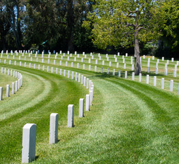 curved rows of grave markers in military cemetery