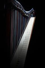 Harp instrument strings closeup. Irish harp music