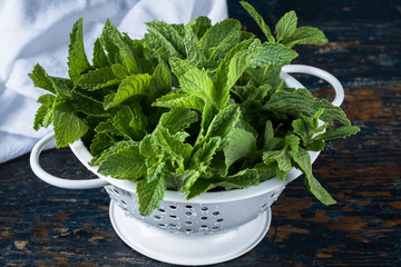 Freshly washed mint in a strainer
