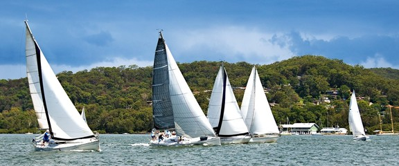 Five monohull sailing yachts racing on Brisbane Water.