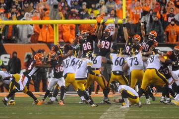 NFL: AFC Wild Card-Pittsburgh Steelers at Cincinnati Bengals