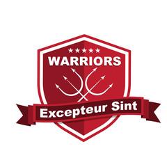Modern triathlon badge emblem logo medal graphics