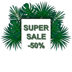 Super sale. Tropical plants. Jungle. Vacation. Isolated on white background.