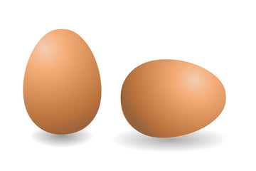 Two vector brown eggs. Isolated eggs on white background.