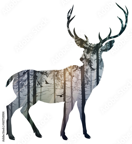 Wall mural Silhouette of a deer. Inside it is a misty coniferous forest with sun rays and flying birds. Isolated object on white background