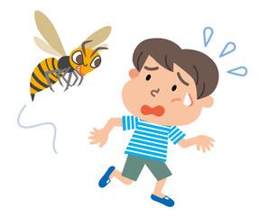 スズメバチ 男の子