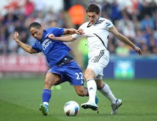 Swansea City v Everton Barclays Premier League