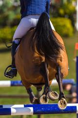 Rider Horse Jumping Rear Hoofs Poles
