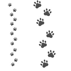 Dog footprint icon isolated on white background; Paws vector illustration