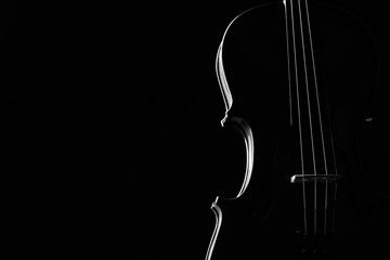 Foto op Canvas Muziek Violin classical music instrument close-up. Stringed musical instrument violin isolated on black background with copy space. Classical orchestra instruments fiddle close up