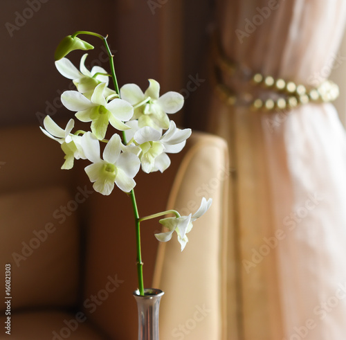 White Orchid Flower In Silver Vase Stock Photo And Royalty Free