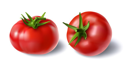 Vector illustration of a realistic style set of red fresh tomatoes with green stems isolated on white, top view, side view. Print, template, design element for packaging