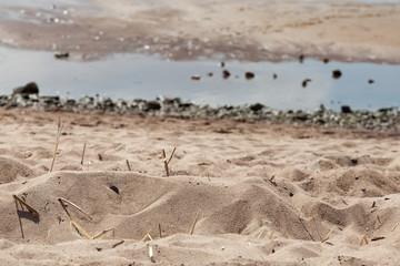 Sand on a sunny day