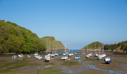 Wall Mural - Watermouth harbour North Devon coast near Ilfracombe uk