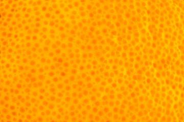 orange peel background