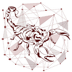 Trend print on a T-shirt. Horoscope, constellation of the scorpion.. Print insects.