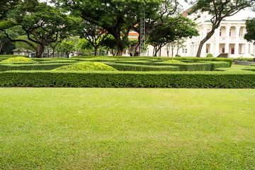 Green garden in Thai style castle