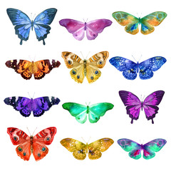 Set of watercolor transparent butterflies in blue, pink, orange, ocher and lilac flowers on a white background