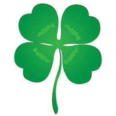 Isolated luck clover for St. Patrick
