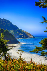 The Devil's Elbow State Park at Heceta Head in Oregon, USA