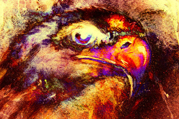 Eagle on abstract color background. Profile portratit. Fire effect.