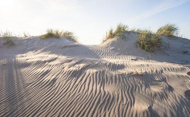 Dünenlandschaft am Meer