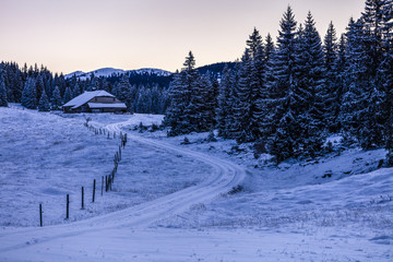 Winter scenery with farm and spruce tree forest, Jura Mountains, Col de Marchairuz, Vaud, Switzerland