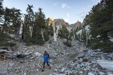 Female hiker on mountain path